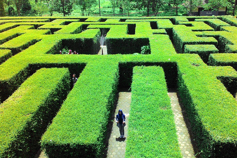 Tempat Wisata di Malang - Taman Labirin Coban Rondo