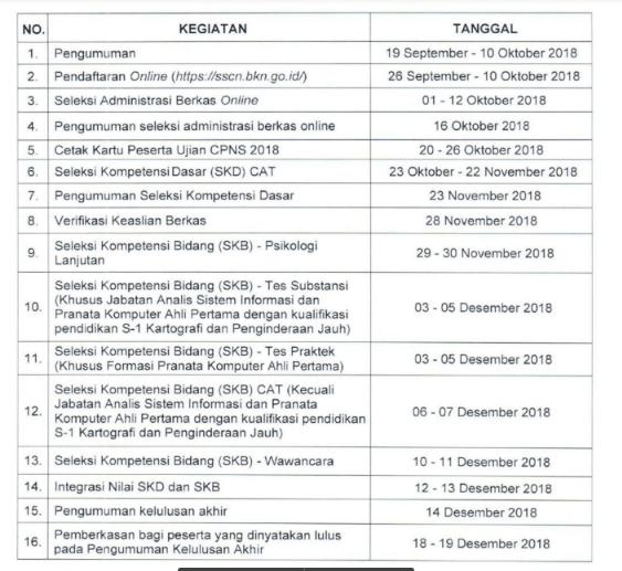 CPNS 2018: Pendaftaran, Tes Seleksi Hingga Pemberkasan