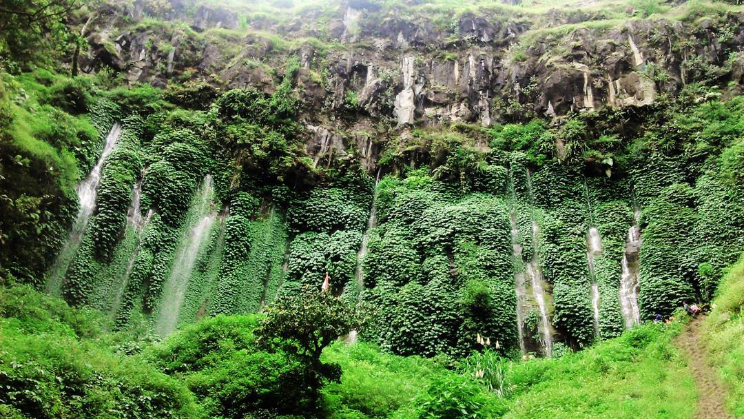 20 Tempat Wisata Alam Di Malang Yang Sayang Dilewatkan Mamikos Info